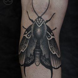 Insektentatoo Motte