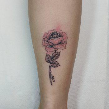 Rose Mit Aquarell Effekten