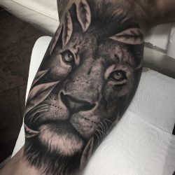 Liontattoo Portrait