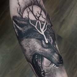 Realism Wolf Tattoo With Graphic Details