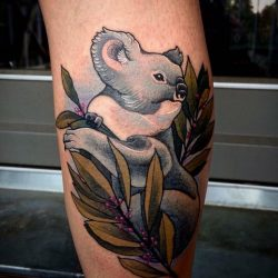 Koala Bär Tattoo Mit Eukalyptus