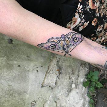 Tattoo Einer Motte Mit Totenkopf In Pastelltönen