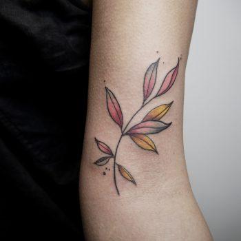 Kleiner Pastell Zweig Als Tattoo